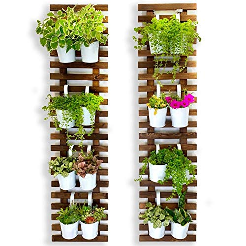 Wall Planter – 2 Pack, Wooden Hanging Large Planters for Indoor Outdoor Plants, Live Vertical Garden, Plant Wall, Wall Mount Plant Holder Stand Room Decor , Garden Wall Trellis for Climbing Plants