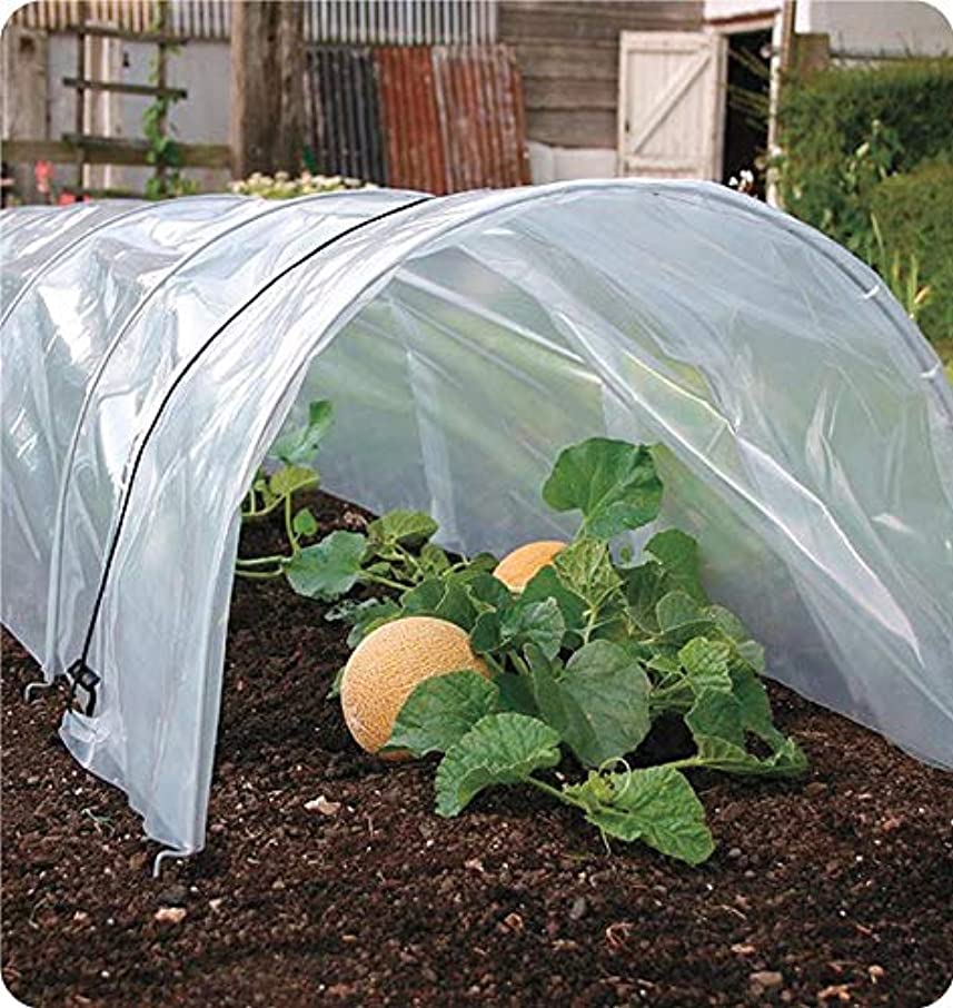 Agfabric 3.1Mil Plastic Covering Clear Polyethylene Greenhouse Film UV Resistant for Grow Tunnel and Garden Hoop, Plant Cover&Frost Blanket for Season Extension,Keep Warm and Frost Protection, 12x20ft