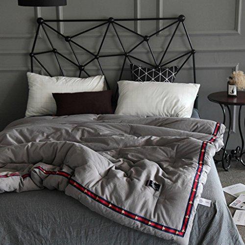 MMM Cotton Spring And Autumn Quilt Double Quilt Core Literie d'hiver individuelle ( Couleur : Gris , taille : 220*240cm(4kg) )
