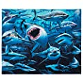 Sharks Beach Towel by Royce 54 x 68 inch Beach Blanket 100% Soft Cotton