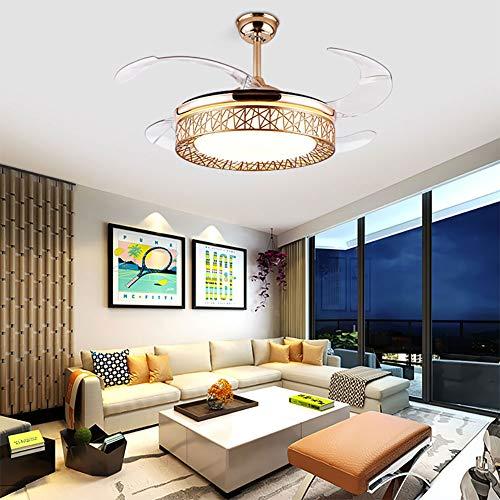 OUKANING Ventiladores para el techo con lámpara