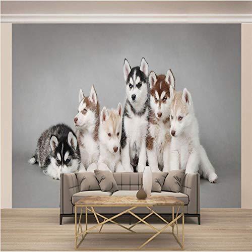 QHZSFF Papel Pintado Mural 3D perro de trineo Talla:250 x 175cm Murales no tejidos, grandes carteles de arte, arte de pared de sala de estar y dormitorio