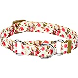 Blueberry Pet Spring Scent Inspired Rose Print Safety Training Martingale Dog Collar, Ivory, Medium, Heavy Duty Adjustable Collars for Dogs