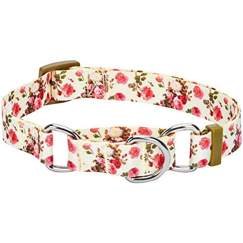 Blueberry Pet 7 Patterns Spring Scent Inspired Rose Print Safety Training Martingale Dog Collar, Ivory, Medium, Heavy Duty Adjustable Collars for Dogs