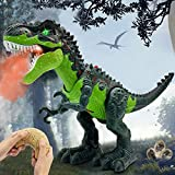 QDRAGON Dinosaur Toys, Remote Control T-Rex Dinosaur with Flame Spaying, Realistic Walking and Roaring, RC Dinosaur Toys for Kids, Tyrannosaurus Rex Toy Gift for Boys and Girls