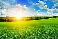 ERZAN大人の子供のおもちゃ農場の小麦畑の日の出明るい青空の風景創造的なギフト1000ピース ジグソーパズル