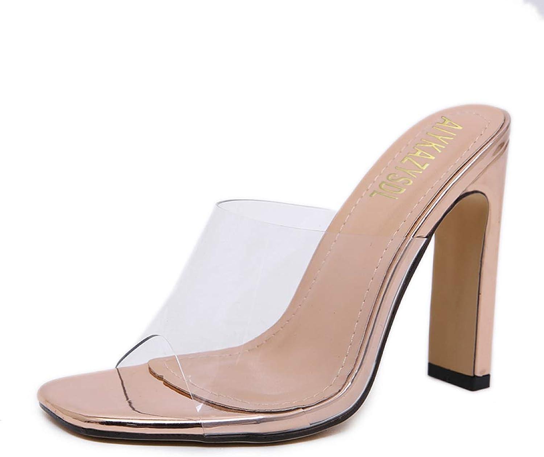 MEIZOKEN Women's Clear Chunky Heel Mule Sandals Open Toe Transparent High Heels Pumps Dress Sandal