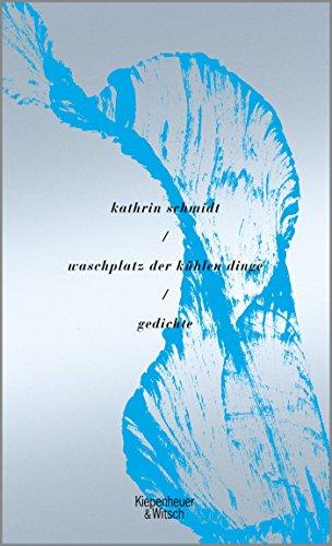 waschplatz der kühlen dinge: Gedichte