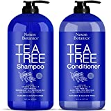 Nexon Botanics Tea Tree Shampoo and Conditioner Set 16 fl oz each - Special Combo for Itchy, Dry Scalp and Hair Dandruff - Sulfate and Paraben Free - Contains Pure, Natural Essential Oils