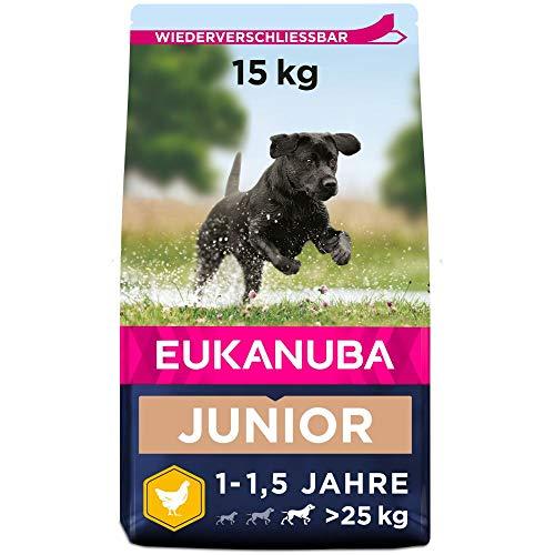 Eukanuba Hundefutter mit frischem Huhn für große Rassen, Premium Trockenfutter für Junior Hunde, 15 kg