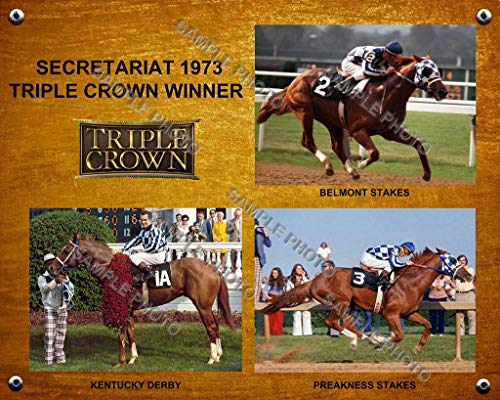 SPORTSPHOTOSUSA Sekretariat 1973 Triple Crown Winner Derby Preakness Belmont Foto Collage 8x10