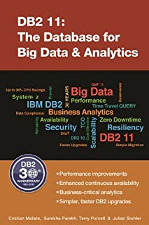 DB2 11: The Database for Big Data & Analytics