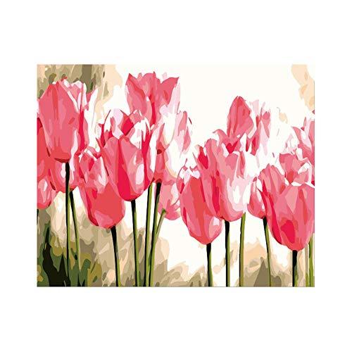 wcyljrb Kit De Pintura Digital De Bricolaje Tulipán Rosa Adult Digital Painting Suite Niños Artista Decoración del Hogar 16 X 20 Pulgadas (Sin Marco)