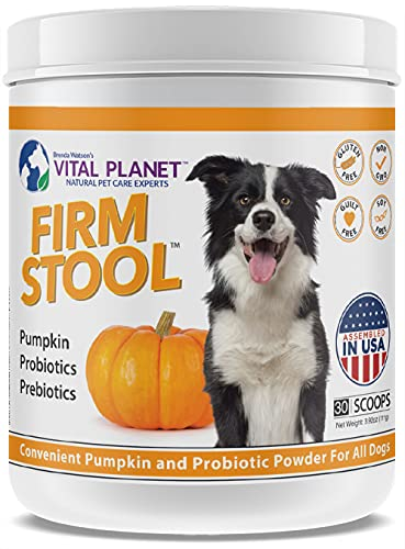 Vital Planet - Firm Stool - Eliminates Dog Diarrhea and Gas - Pumpkin  Probiotics and Prebiotics for Healthy Digestion  Immune Support and Reqularity - 111 Grams 30 Servings