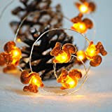 Impress Life Squirrel Decoration String Lights, Christmas Festive Chipmunk Novelty Lights Battery-Powered 10 ft 40 LEDs with Remote for Winter Christmas Home Party, Fall, Forest Wedding, Thanksgiving