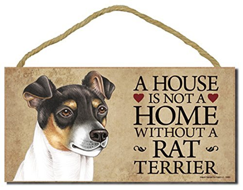 Rat Terrier Dog Sign with Personalization Kit a House is Not a Home Without a Rat Terrier by SJT.