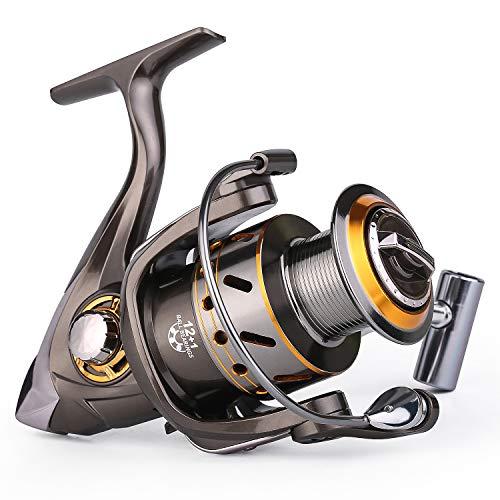 Sougayilang Fishing Reel Spinning -12+1BB Ultralight Smooth Powerful Spinning Reels for Freshwater Saltwater Bass Fishing(13bbdk-2000)