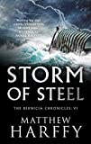 Storm of Steel: A gripping, action-packed historical thriller (The Bernicia Chronicles Book 6)