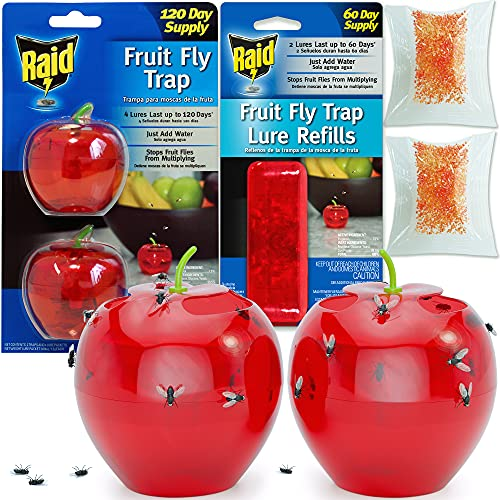 Raid Fruit Fly Trap (2 Pack Bundle) | 2 Lures + 2...
