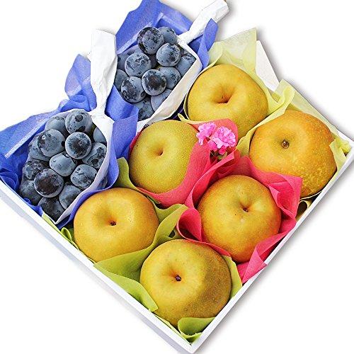 種無し葡萄と梨のセット 中 フルーツギフト 化粧箱 御祝 御礼 お誕生日 お供え 贈答用 御中元