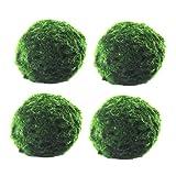 LASADC Java Moss Marimo Moss Ball Stone Pad for Fish Aquarium,Nano Marimo Moss Ball-Algae Live,for Aquarium Decorations(4pcs) (4.5cm)