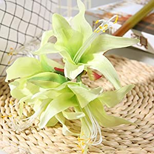 Artificial and Dried Flower Bird of Paradise Clivia Artificial Flower Flower Bouquet Soft Rubber Flower Color Bird of Paradise Dried Flower Decoration