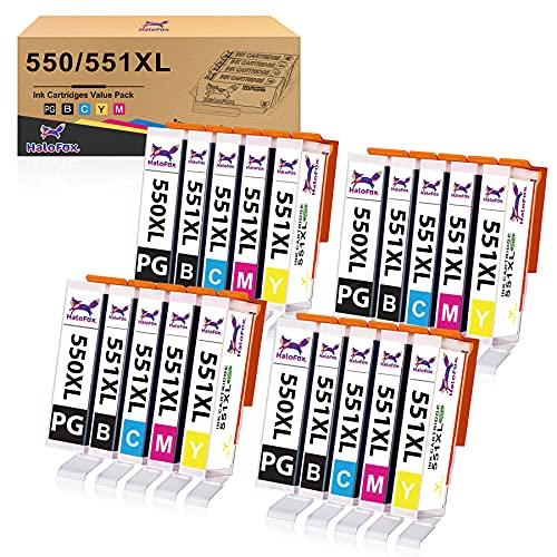 Halofox Druckerpatronen Kompatibel für Canon PGI-550 CLI-551 XL für IP7250 MX925 IP8750 MG5650 IX6850 MX725 MG5550 MG5450 MG6650 MG6450 (20 Stück)