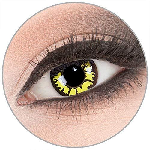 Farbige gelb gelbe 'Yellow Wolf' Kontaktlinsen von 'Evil Lens' zu Fasching Karneval Halloween 1 Paar gelb schwarze Crazy Fun Kontaktlinsen mit Behälter ohne Stärke