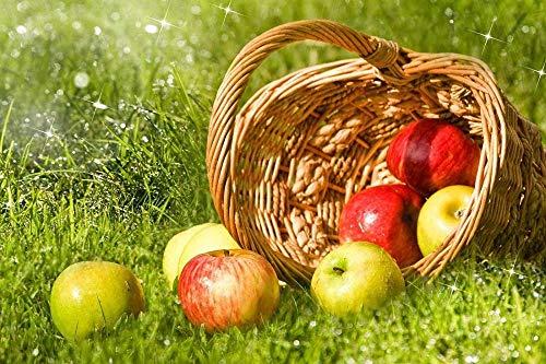 Puzzle 500 Teile Rätsel Für Erwachsene Kinder Jugendliche-Äpfel Im Korb