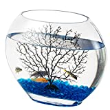 hygger Mini Glass Oblate Fish Bowl Kit, Small Fish Tank Comes with Blue Aquarium Decor Stones and Plastic Fan Branch Tree Ornament