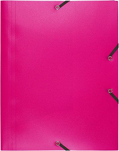 Exacompta 55920E - Carpeta con goma, color rosa
