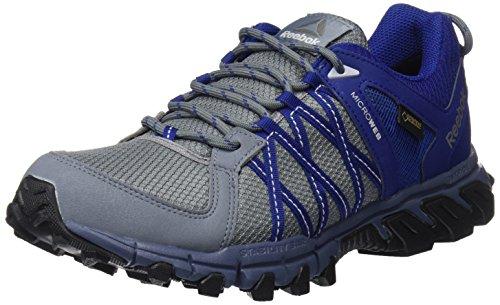 Reebok Herren Trailgrip Rs 5.0 GTX Laufschuhe, AST Dust Deep Cobalt Cl Gry Ash Gry Indi, 46 EU