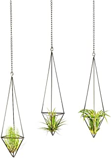 Mkono 3 Pack Hanging Air Plant Holder Himmeli for Tillandsia Display Gemometric Planter with Chains Home Decor for Airplants, Bronze