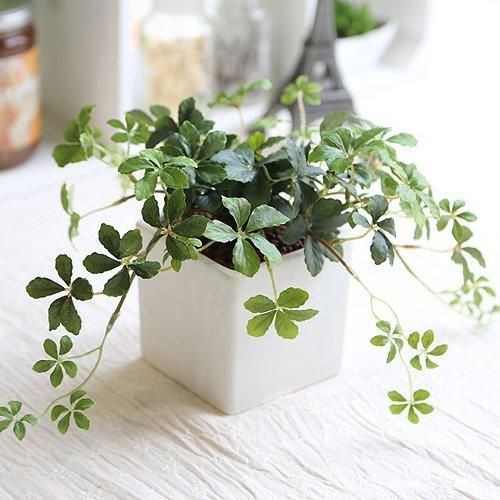 L.シサスアイビー シュガーバイン 造花 観葉植物 ミニ フェイクグリーン 消臭 光触媒 CT触媒 人工 リアル おしゃれ 室内 ギフト