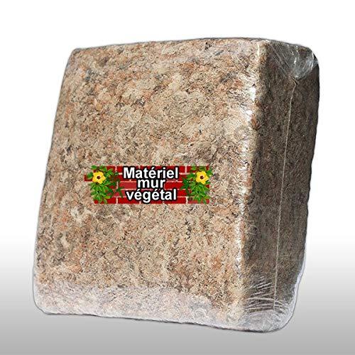 Sphaigne de Madagascar 1KG (substrat pour Mur végétal)