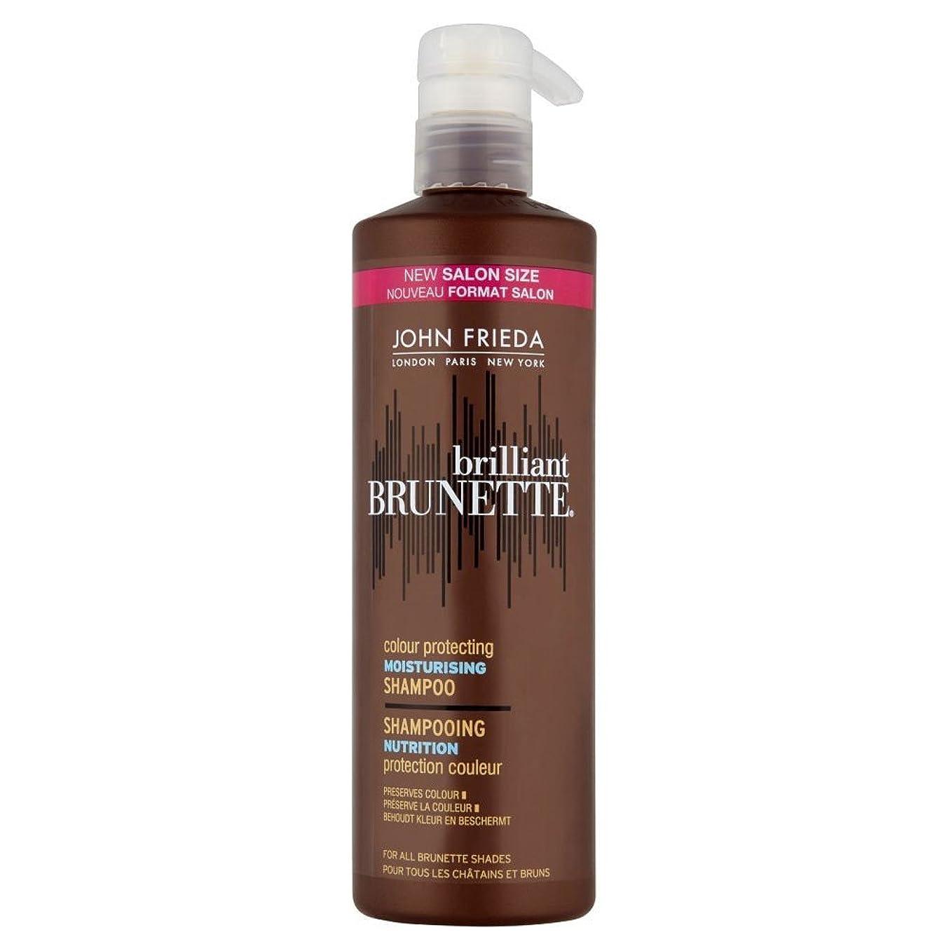 充電パイント干し草John Frieda Brilliant Brunette Colour Protecting Moisturising Shampoo (500ml) ジョン?フリーダ鮮やかなブルネットの色保護保湿シャンプー( 500ミリリットル) [並行輸入品]