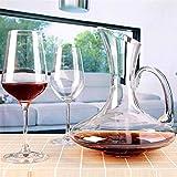 Decantador de Vino 1900ML base plana Red Wine Decanter Premium Water garrafa espesado pared hecha a mano de cristal Vino Vertedor (Color : 1900ML)