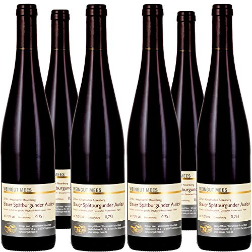 Weingut Mees Spätburgunder Rotwein Auslese Edelsüß Süß Fruchtig Prämiert Dessertwein 2018 Probierpaket Wein Nahe Deutschland Weinpaket (6 x 750 ml) 100% Blauer Spätburgunder