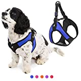 Gooby Dog Harness - Blue, Medium - Escape Free Easy Fit Patented Step-in Small Dog Harness - Perfect on The Go - No Pull Harness for Small Dogs or Cat Harness for Indoor and Outdoor Use
