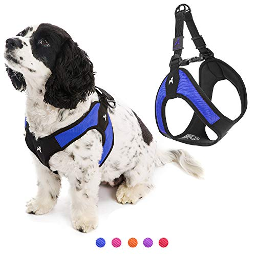 Gooby Dog Harness - Blue, Small - Escape Free Easy Fit Patented Step-in Small Dog Harness - Perfect on The Go - No Pull Harness for Small Dogs or Medium Dog Harness for Indoor and Outdoor Use Review