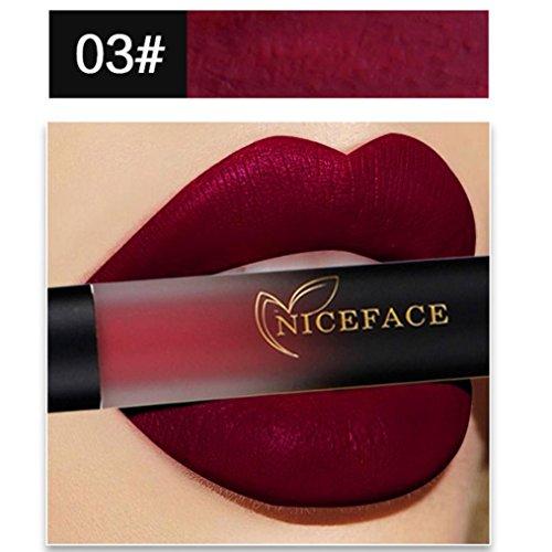 AMUSTER.DAN Lippenstifte 18 Farben Matt Wasserfest Lippenstifte Liquid Lipgloss Make up (C)