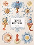 The Art and Science of Ernst Haeckel: HAECKEL-TRILINGUE (Extra Large)