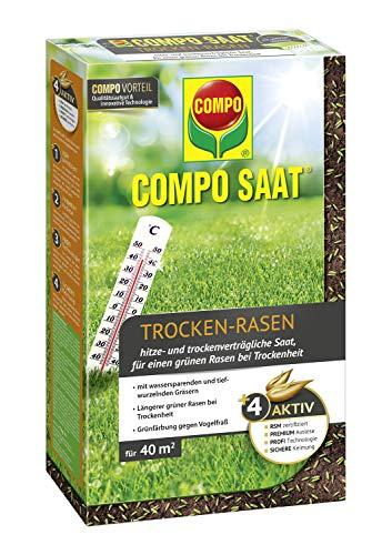 Compo SAAT Trocken-Rasen, Hitze- und trockenverträgliche Saat für trockene und sonnige Standorte, 1 kg, 40 m²