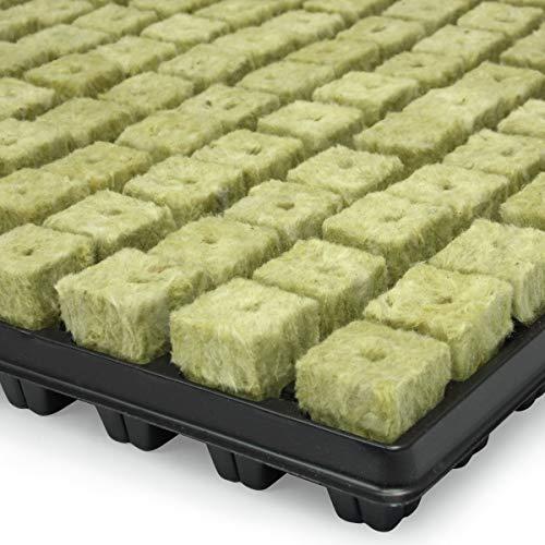 Plateau de 150 bouchons de laine de roche GRODAN