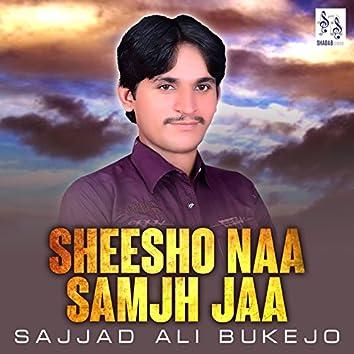 Sheesho Naa Samjh Jaa