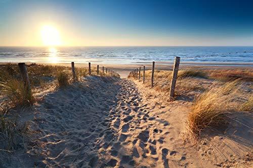 Bilderdepot24 Fototapete selbstklebend | Schöner Weg zum Strand III - 150x100 cm | Wandposter Tapete Wandtapete - Dünenlandschaft Natur