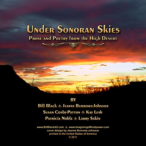 Under Sonoran Skies audiobook cover art