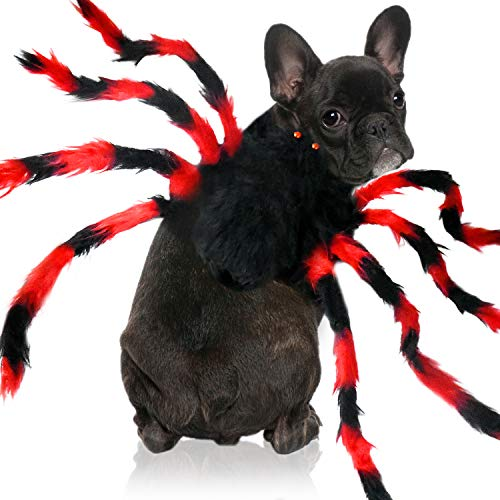Malier Halloween Dog Cat Costume, Realistic Plush Simulation Spider Pets Cosplay Adjustable Costume- Halloween Party Decoration Costume for Cats Kitten Dogs Puppy (Red+Black) (Medium)