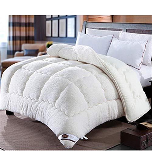 Hxsm 1PCS Lamb cashmere velvet Fabric warm winter wool quilt thicken comforter duvet blanket king queen size double Cashmere-220_x_240cm_4kg