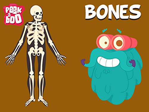 Bones The Dr. Binocs Show Educational Videos For Kids